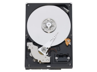 Жесткий диск WESTERN DIGITAL 100GB Blue (WD10EZEX)
