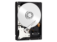 Жесткий диск HDD 100GB WESTERN DIGITAL Red (WD10EFRX)